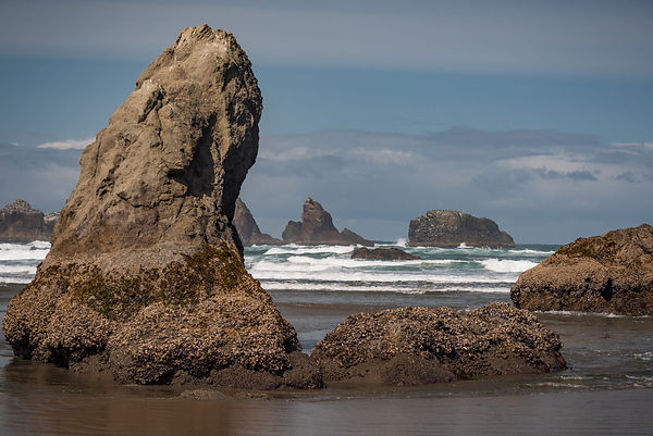 Oregon_Coast-24