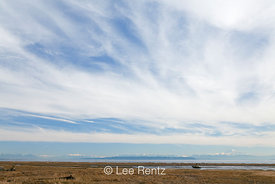 Shore of Boundary Bay and Distant North Cascade Mountains