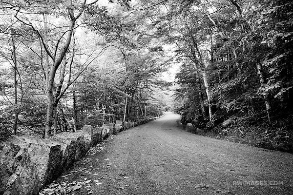 CARRIAGE ROAD ACADIA NATIONAL PARK BLACK AND WHITE