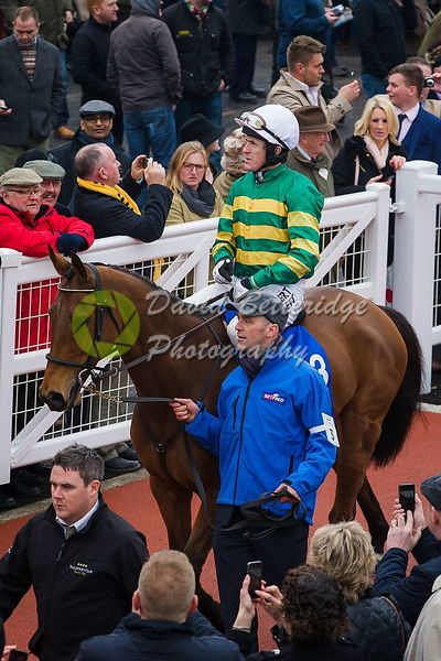 Cheltenham_Gold_Cup_Day_2015_-250