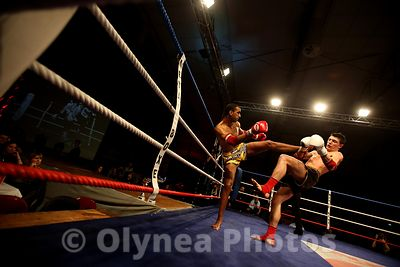 Combat sport : Boxing photos, pictures, picture, agency