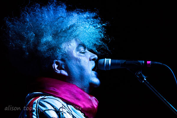 Melvins photos