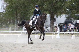 SI_Festival_of_Dressage_310115_Level_6_7_MFS_0645