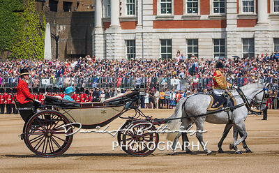Trooping_the_Colour_8734
