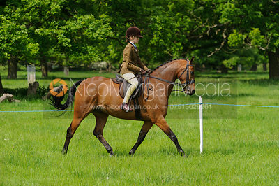 Class 43 - BSPS RIHS Pony of Show Hunter Type >133cms <=143cms photos