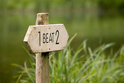 Beat sign on bank of River Test, Hampshire