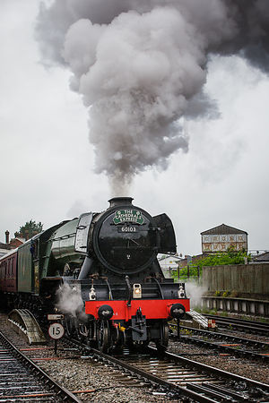 Flying_Scotsman-631