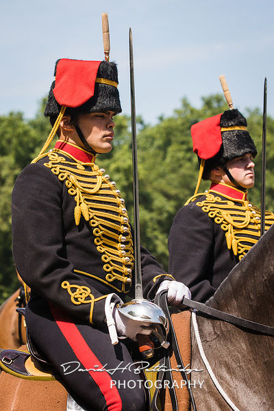 Trooping_the_Colour_8841