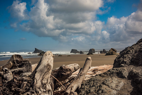Oregon_Coast-19