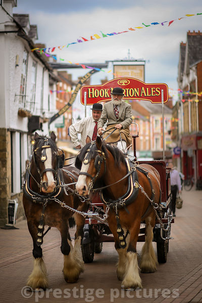 Hook Norton Brewery Horses and Dray