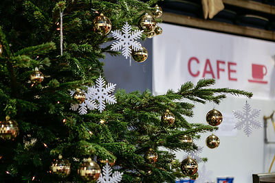 cafe-sign-behind-christmas-tree-crisis-christmas-Copyright-Rob-Johns_MG_6013