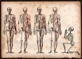 Four Skeletons Standing