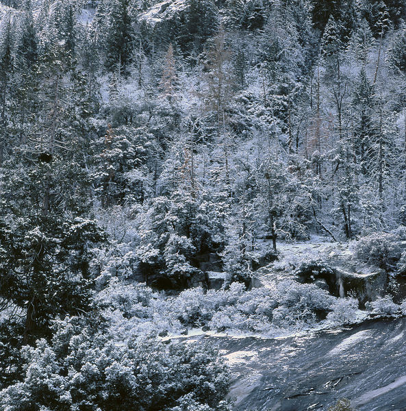 008-California_CA141015_Yosemite__Fresh_Snow_Vignette_01_Preview