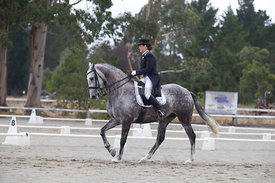 SI_Festival_of_Dressage_300115_Level_6_NCF_0167