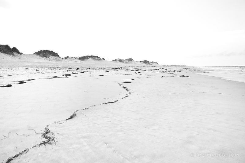 PEA ISLAND OUTER BANKS NORTH CAROLINA BLACK AND WHITE