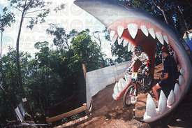 NICOLAS VOUILLOZ (MENS WINNER  PICTURED) AND OTHER DOWNHILL COMPETITORS STARTED FROM INSIDE THE JAWS OF A GIANT SHARK AT  CAIRNS, AUSTRALIA. UCI WORLD CHAMPIONSHIPS 1996