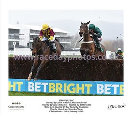 1:50 The Spectra Cyber Security Solutions Trophy Handicap Steeple Chase photos