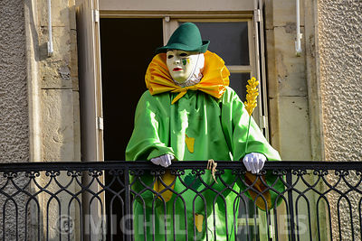 CARNAVAL DE LIMOUX photos