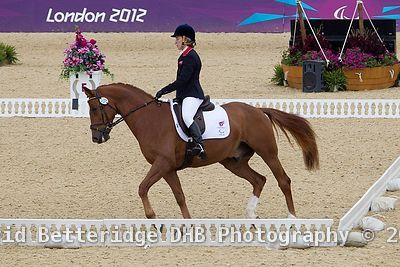 Paralympic_Dressage_02.09.12DHB_0011