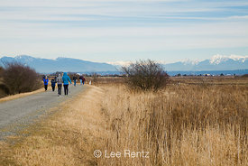Birders and Others on the Boundary Bay Dyke Trail