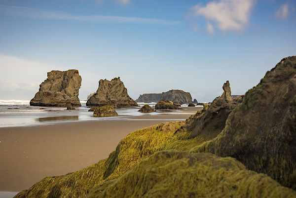 Oregon_Coast-40