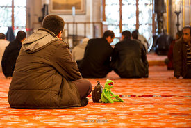 A tourist and his green friend at the Blue Mosque (Sultan Ahmed Mosque) in Istanbul.