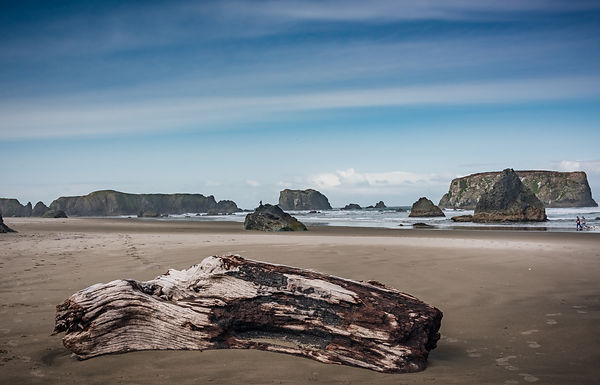 Oregon_Coast-15