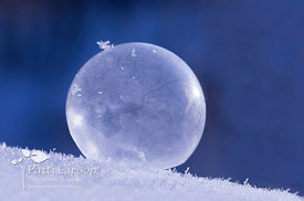 Frozen Bubble – Color
