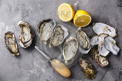 Open Oysters on concrete background copy space