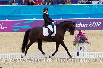 Paralympic_Dressage_02.09.12DHB_0172