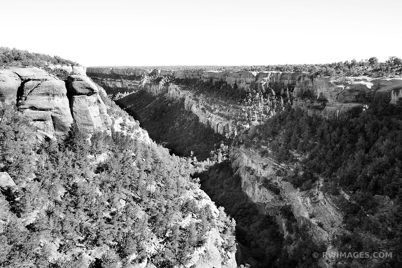 CANYON MESA VERDE NATIONAL PARK COLORADO BLACK AND WHITE