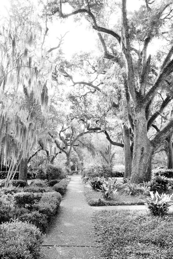 MYRTLES PLANTATION ST. FRANCISVILLE LOUISIANA BLACK AND WHITE