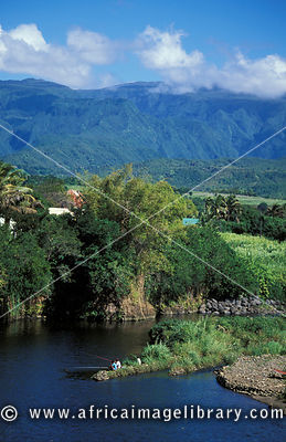 Mountain scenery with sugarcane plantations in the East, Reunion