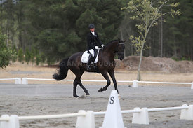 SI_Festival_of_Dressage_310115_Level_1_Champ_0697