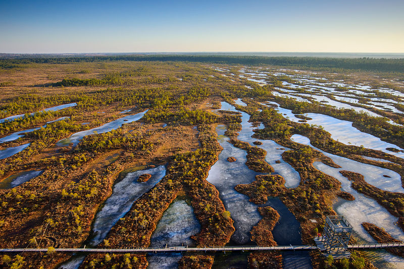 Aerial view of spring over Mannikjarve bog hiking trail in Endla Nature Reserve, Jogevamaa County, Estonia, March 2015. Taken with drone camera.