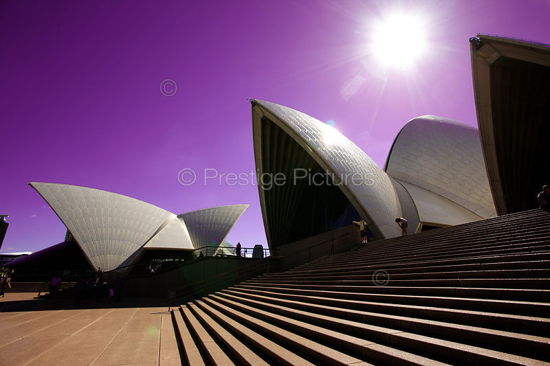 The Sydney Opera House against a Purple Sky