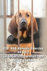 028__KSB_Kennels_Exercise_161212