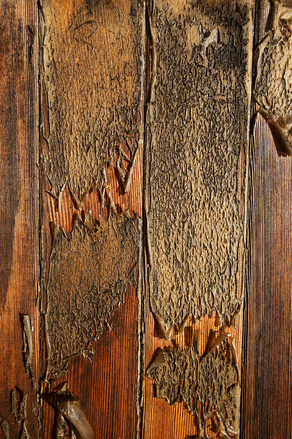 Wood texture on door