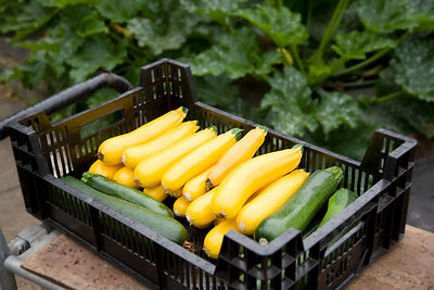 basket of green and yellow zucchini