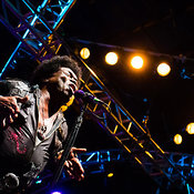 TF16: Charles Bradley & His Extraordinaires photos