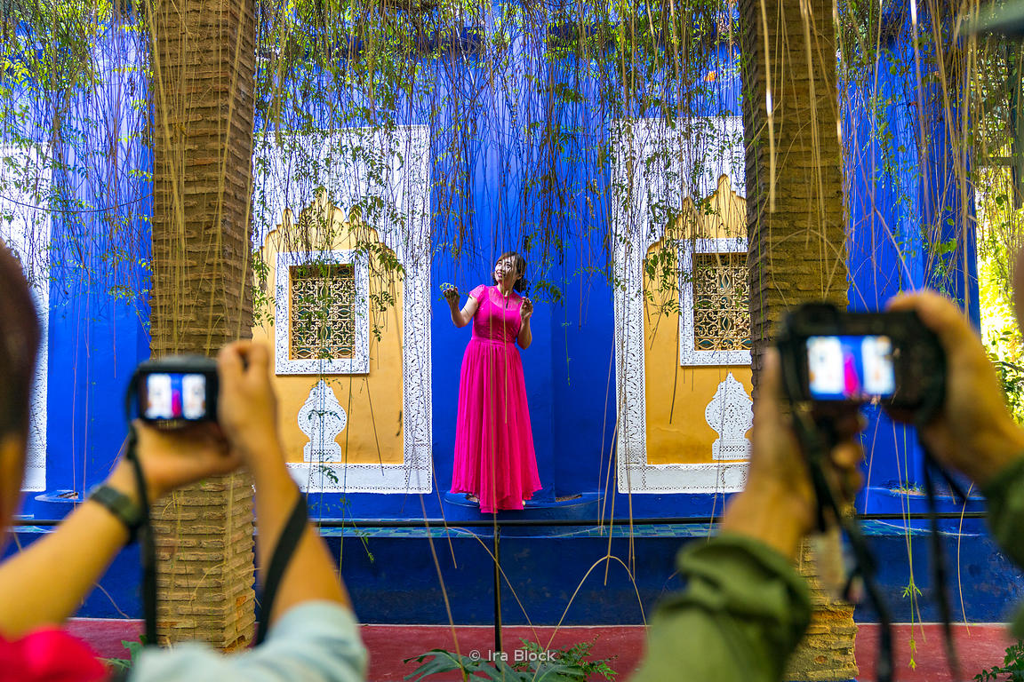 A scene at the Jardin Majorelle n Marrakesh, Morocco