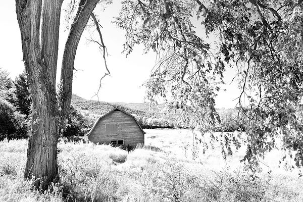RED BARN KEENE VALLEY ADIRONDACK MOUNTAINS NEW YORK BLACK AND WHITE