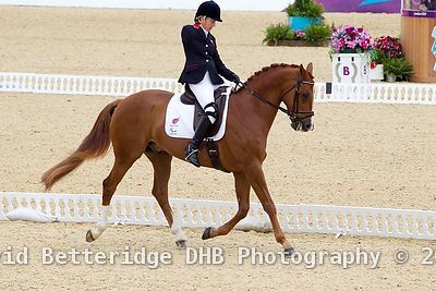 Paralympic_Dressage_02.09.12DHB_0003