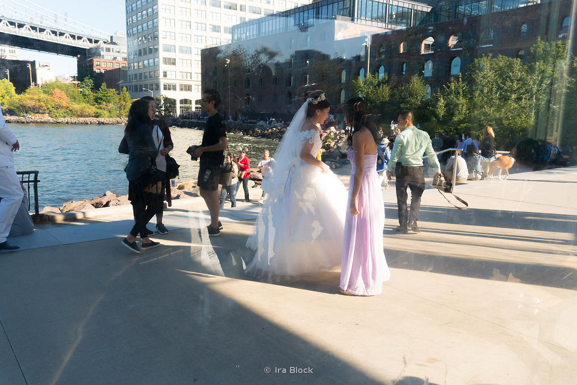 A wedding shoot at Brooklyn Bridge Park in New York City.