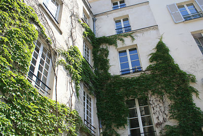 Apartment building with ivy, Paris, France
