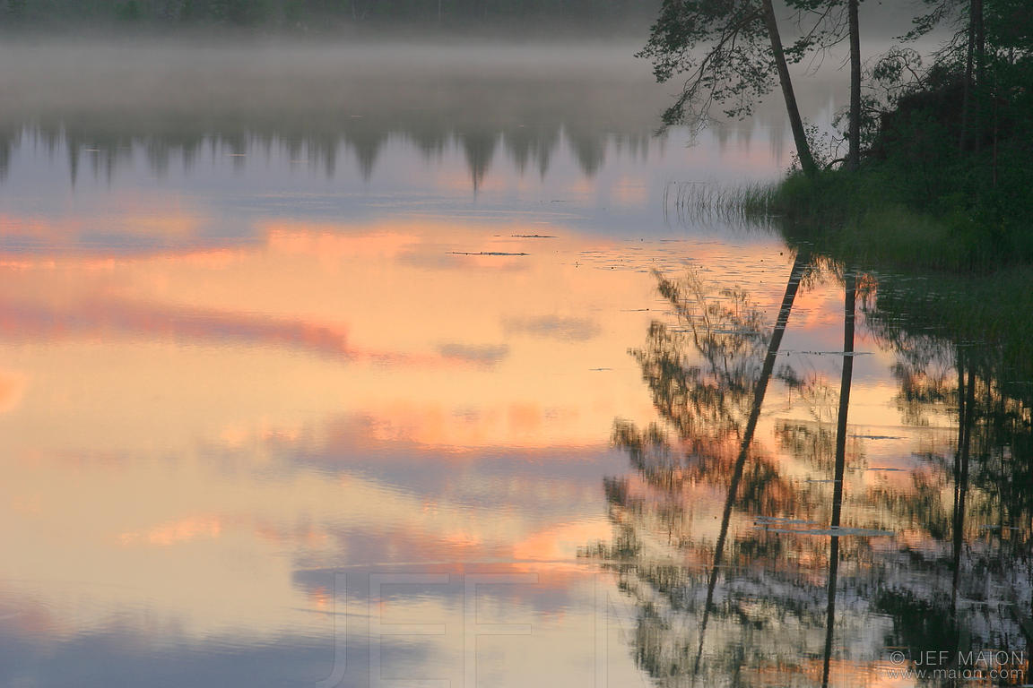 Sunset and tree reflection on the surface of a still lake