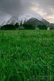 Green grass field and snow-covered mountain