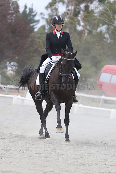 South Island Festival of Dressage 2015 photos