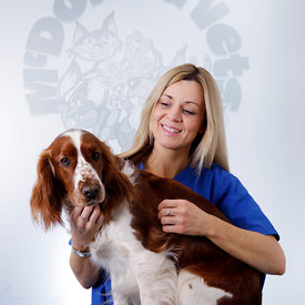 Staff and Pet photography..March / April 2015..For Sole Use By Pets n Vets, Glasgow..Free Use by Pets n Vets, Glasgow...Picture Copyright:.Iain McLean,.79 Earlspark Avenue,.Glasgow.G43 2HE.07901 604 365.photomclean@googlemail.com.www.iainmclean.com.All Rights Reserved.No Syndication