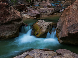 Zion_National_Park_2012_156